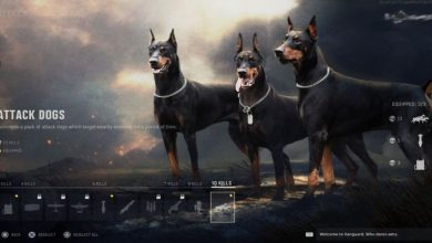 cod dogs